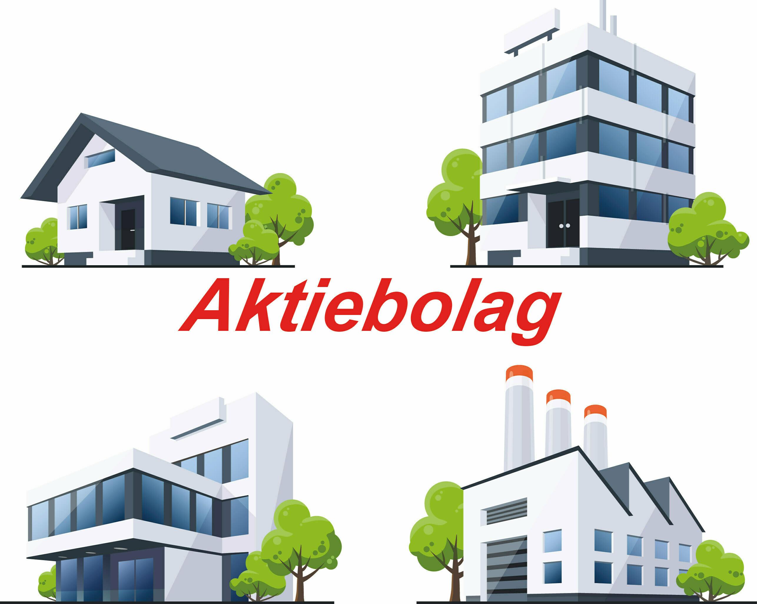 Aktiebolag, Angamato Ekonomikonsult, Ekonomikonsult, Tomas Tobiasson