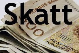 Image result for skatter